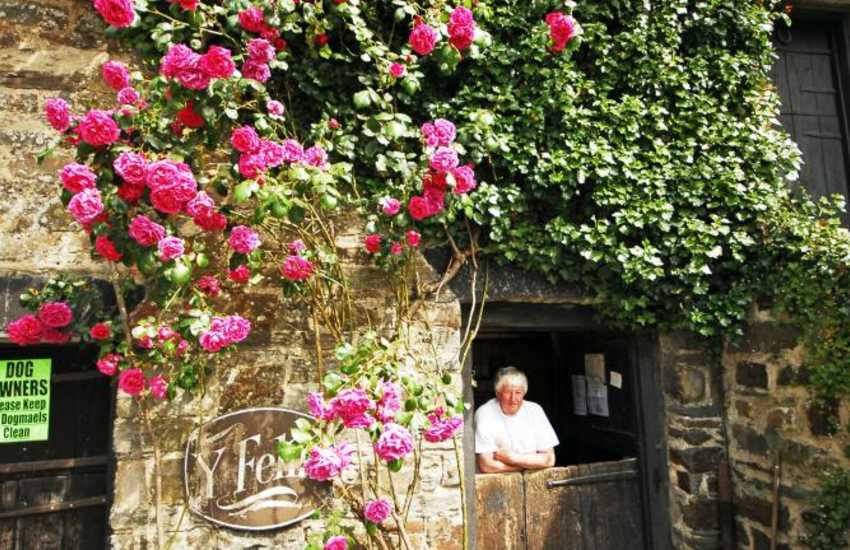 Do visit 'Y Felin' and the friendly miller in St Dogmaels - one of the last working water mills in Wales producing traditional stone-ground flour
