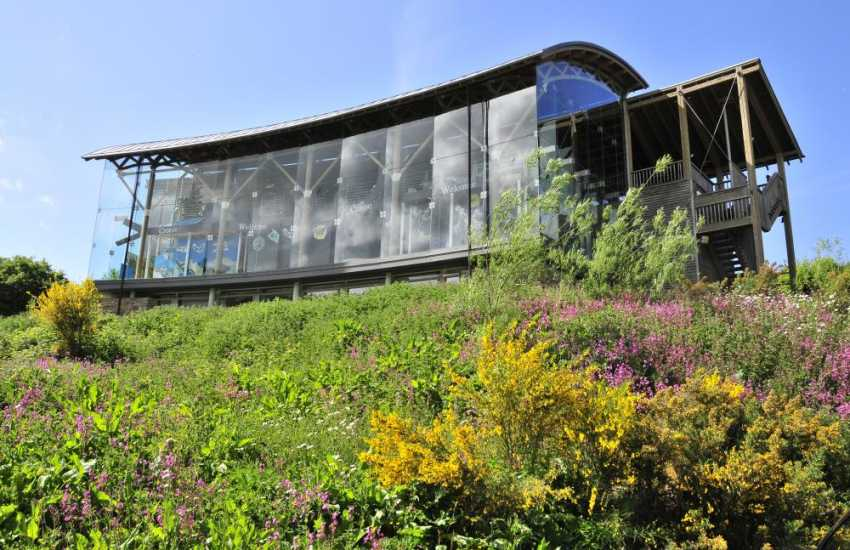 The Welsh Wildlife Centre at Cilgerran lies in 270 acres of the Teifi Marsh Nature Reserve. Swans, otter trails, mallard hides, lots of activities to enjoy and delicious food at the cafe in the amazing curved-glass visitors centre