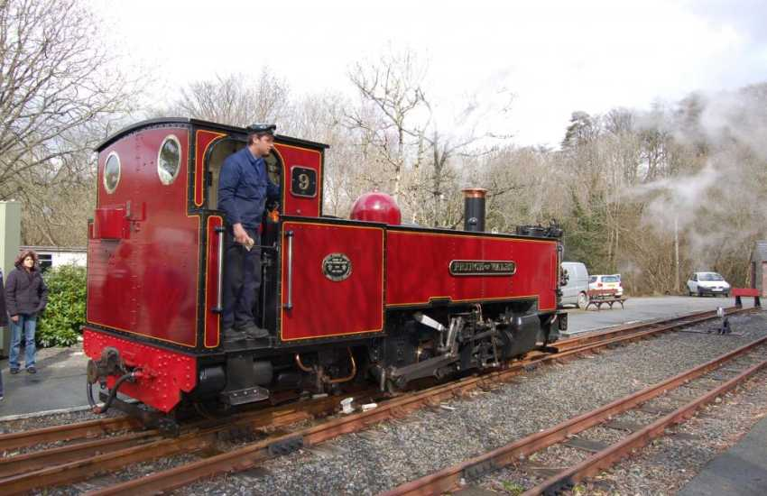 Vale of Rheidol Railway, a fun experience for all ages