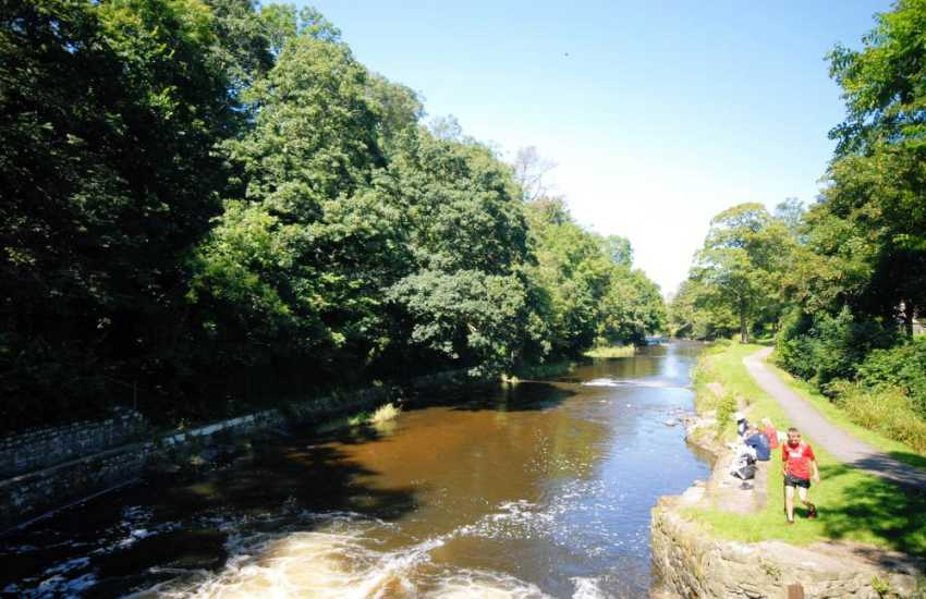 Enjoy a stroll along 'Lovers Walk' which runs beside the River Aeron nearby