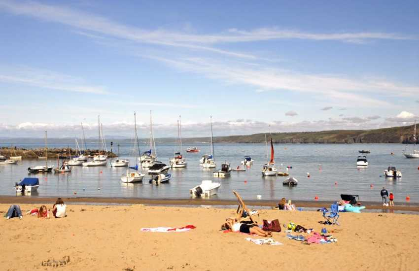 Dolau and The Harbour -  two of New Quay's 3 golden sandy Blue Flag beaches to choose from