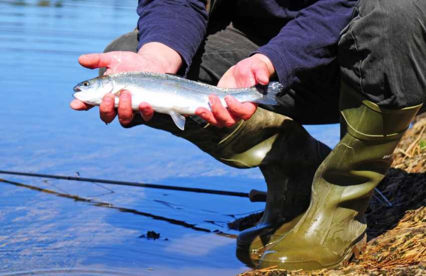 North Wales rivers and lakes make fine fishing locations