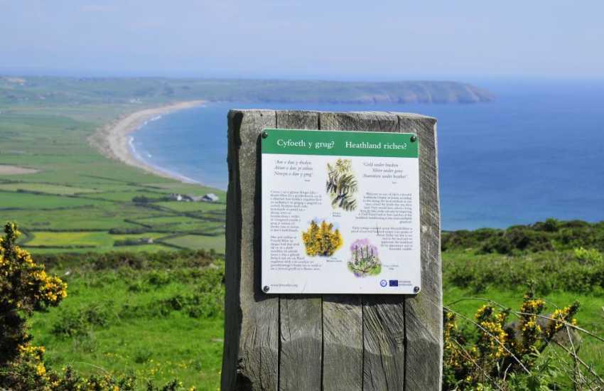 The heath-land above Hells Mouth Beach