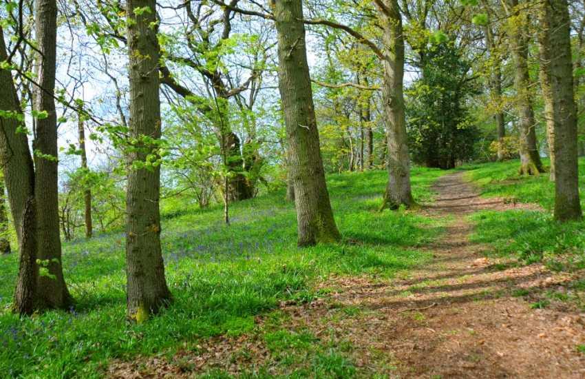 Dyffryn Maentwrog & Llyn Mair walks