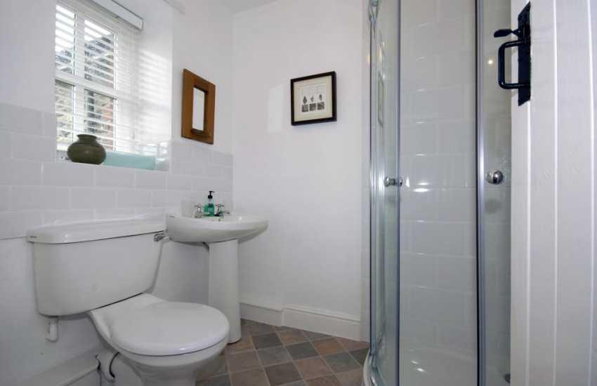 St Davids holiday cottage - shower room
