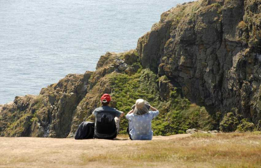 The Pembrokeshire Coast abounds with a wonderful variety of birds and wildlife throughout the year