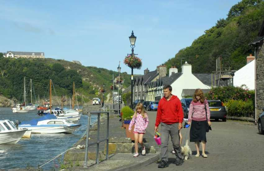 Fishguard Lower Town - stroll along the harbour wall and spot sea birds, geese and ducks
