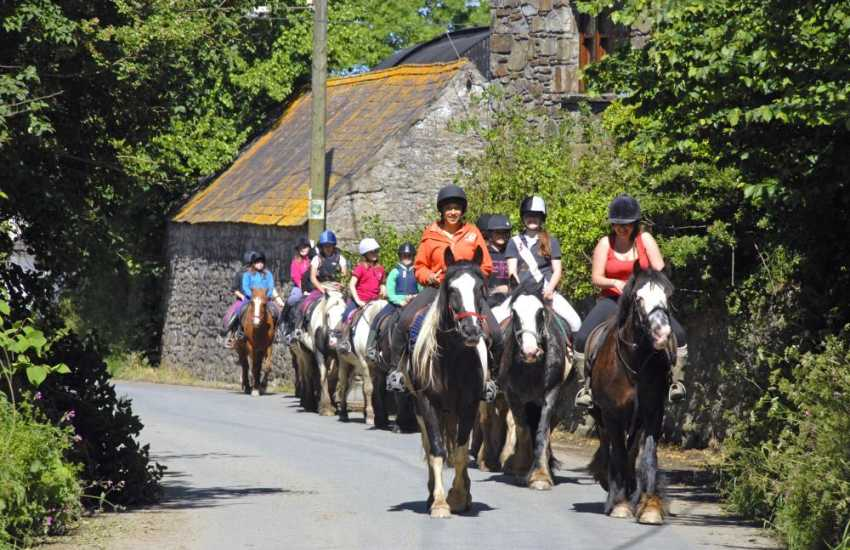 Llanwnda Riding Stables in nearby Goodwick cater for all levels of riding abilities - enjoy trekking in the beautiful Pembrokeshire National Park