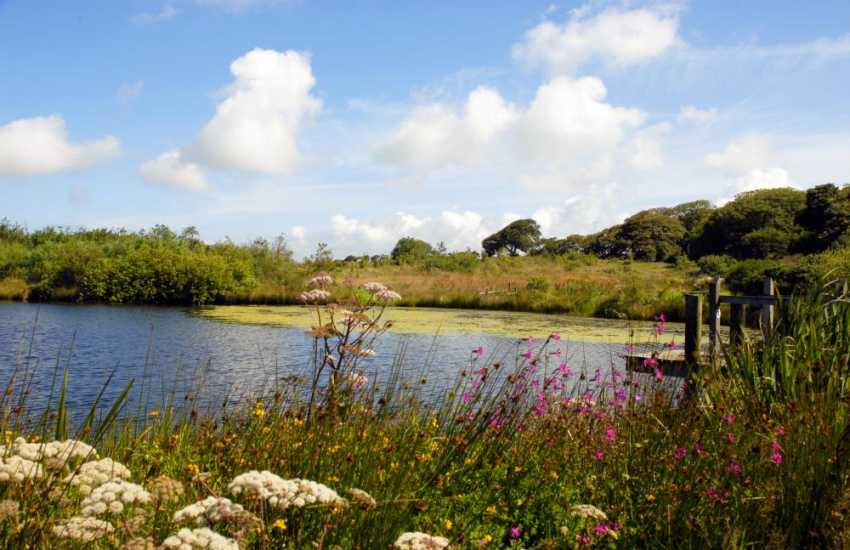 Nature reserve and lakes in the grounds of Lochturffin where trout fishing is available