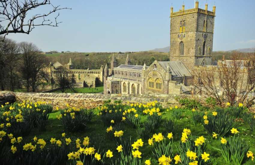 St Davids with it's magnificent cathedral has a variety of restaurants, cafes, galleries and interesting little shops in which to browse