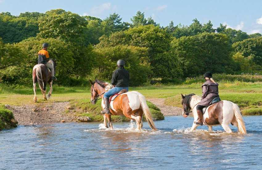 Ogmore Farm Riding Centre, horse and pony trekking for all ages and abilities.
