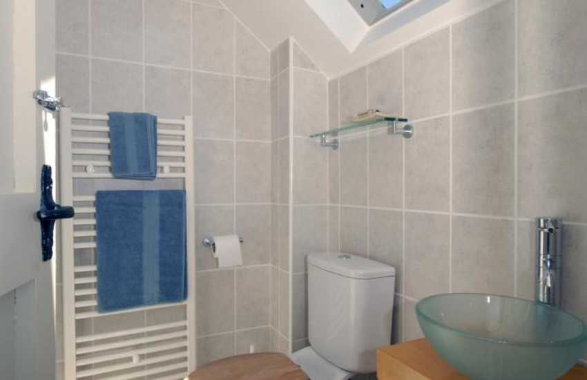 St Davids holiday cottage - small shower room
