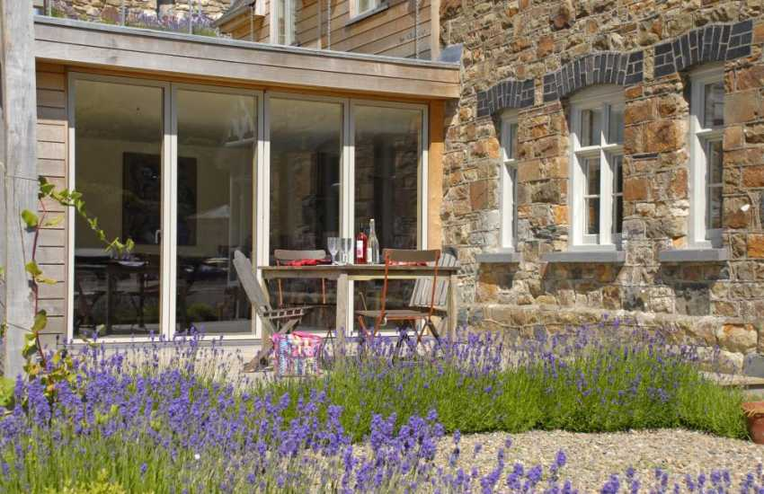 Beautiful Lavender at The Quay House, Lower Town