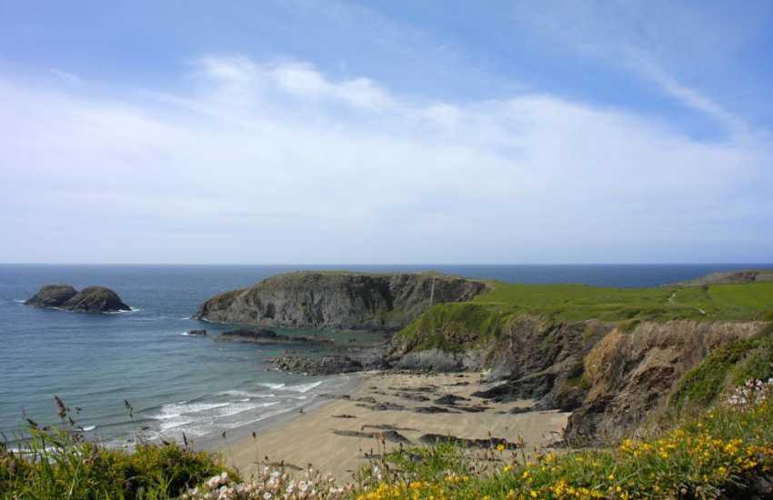 On the Pembrokeshire Coast path overlooking beautiful beach of Traeth Llyfyn