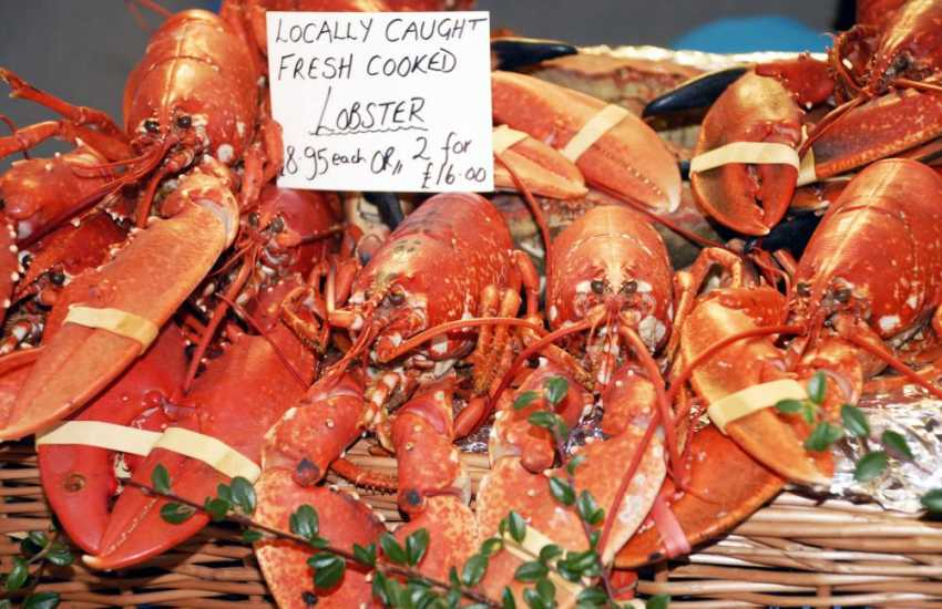 Riverside Farmers Market, Haverfordwest - an award winning weekly market where fresh locally caught seafood and Pembrokeshire produce is for sale