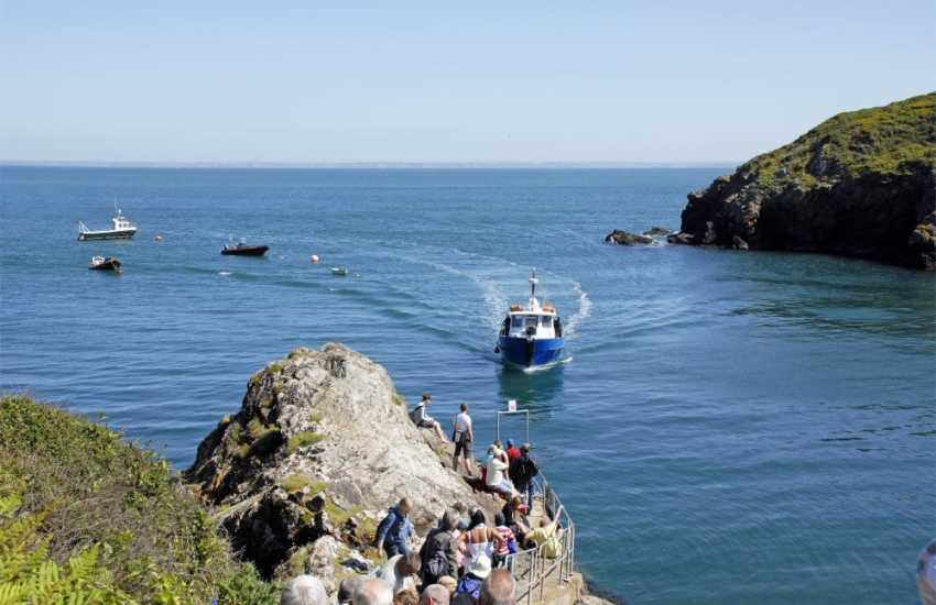 Visit Skomer Island Marine Nature Reserve aboard The Dale Princess to see wonderful wildlife from spring to autumn