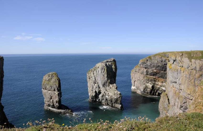 Walk the Pembrokeshire Coast Path along majestic cliff top headlands for superb coastal scenery
