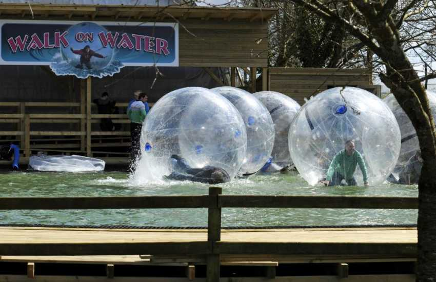 Folly Farm, Oakwood, Scolton Manor and 'Walk on Water' at Heatherton Activity Park - great family days out in Pembrokeshire