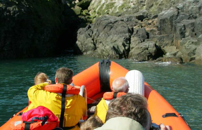 Book a sea safari from Brunel Quay, Neyland out to explore the Viking Islands of Skomer and Skolkholm off the Pembrokeshire coast