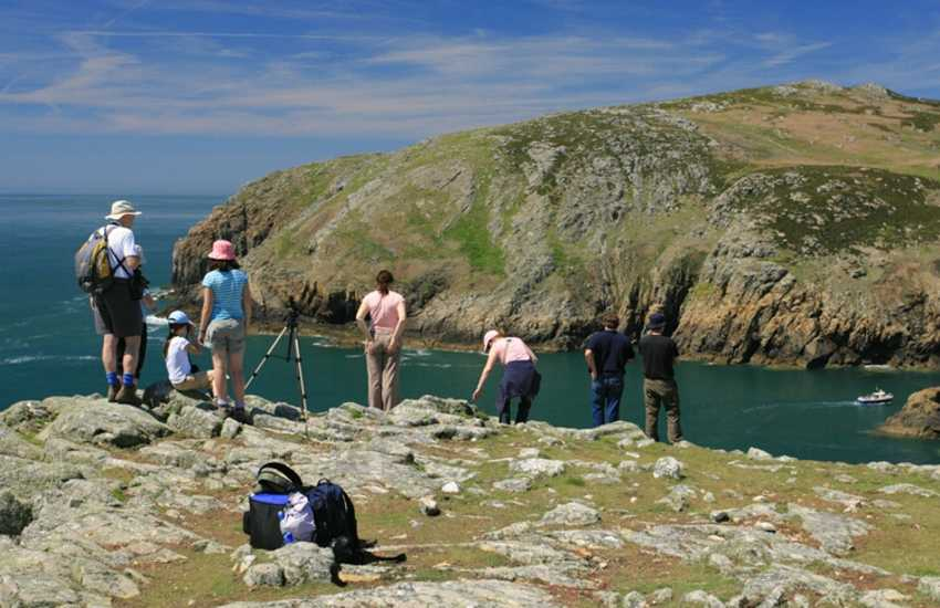 Walk round St Davids Peninsula from Whitesands Bay for some spectacular coastal views
