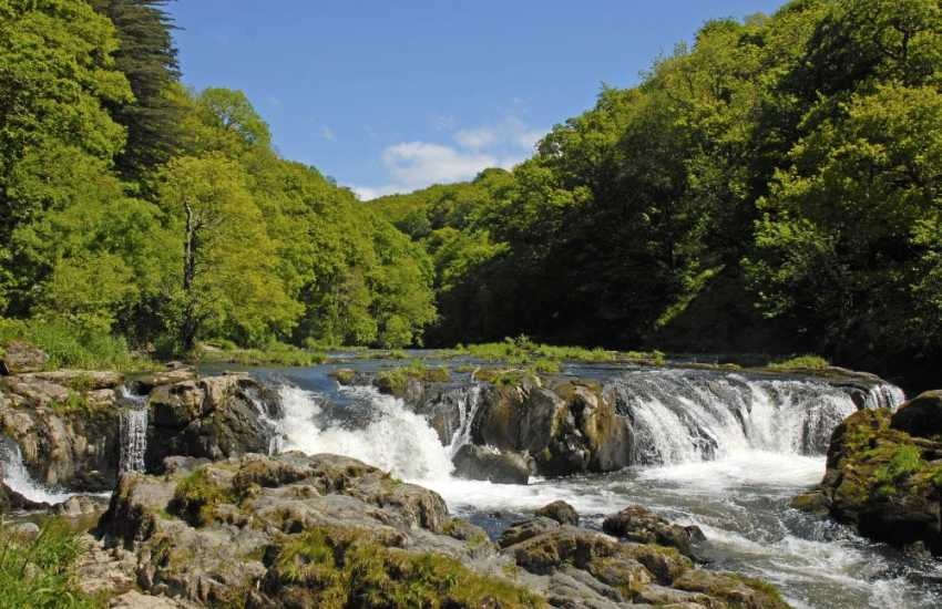 The Teifi River Falls in the picturesque village of Cenarth - watch the salmon leap up-stream during September