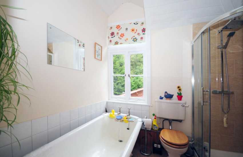 Mid wales holiday house - bathroom