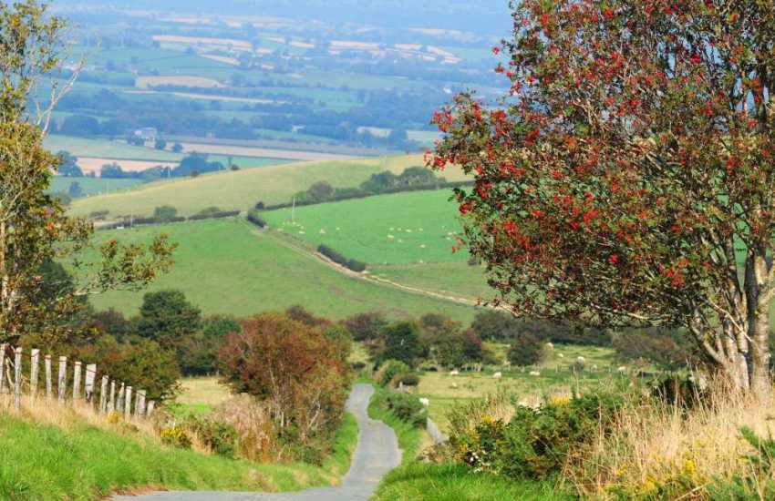 Clun Forest, the Shropshire Way and Offa's Dyke offer enjoyable days out in the fresh air and beautiful countryside all year round