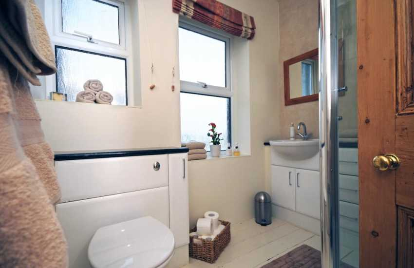 Lleyn Peninsula holiday home to rent - shower room