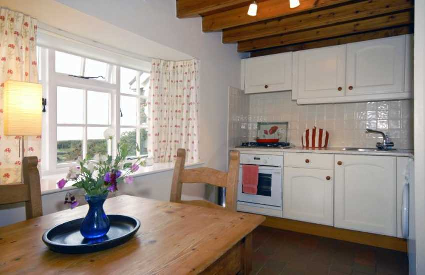 St Davids self catering cottage - galley style kitchen