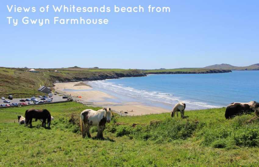 Views of Whitesands Beach from Ty Gwyn Farmhouse
