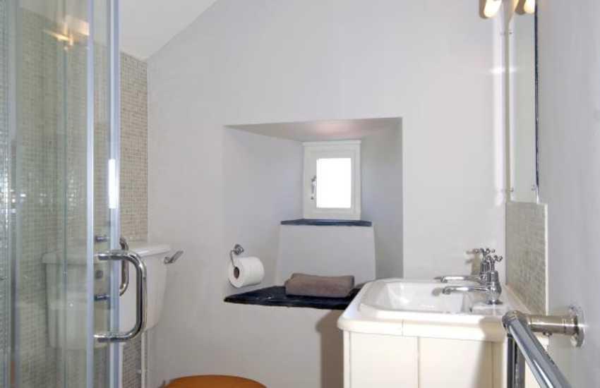 St Davids holiday house - master en-suite shower