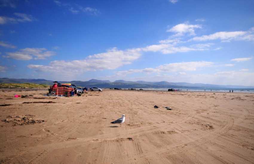 Blackrock Sands, drive on beach near Criccieth