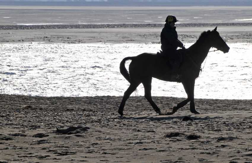 Horses on the beach, Anglesey