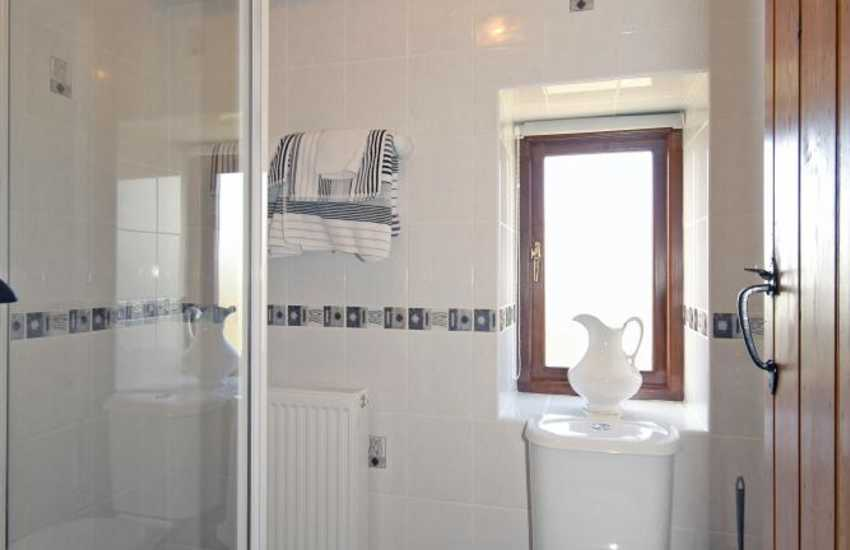 Pembrokeshire holiday cottage - ground floor shower room
