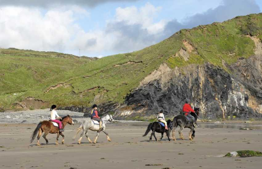 Nolton Riding Stables cater for both beginners and experts - a gallop through the waves on Druidston Beach is a truly memorable holiday experience