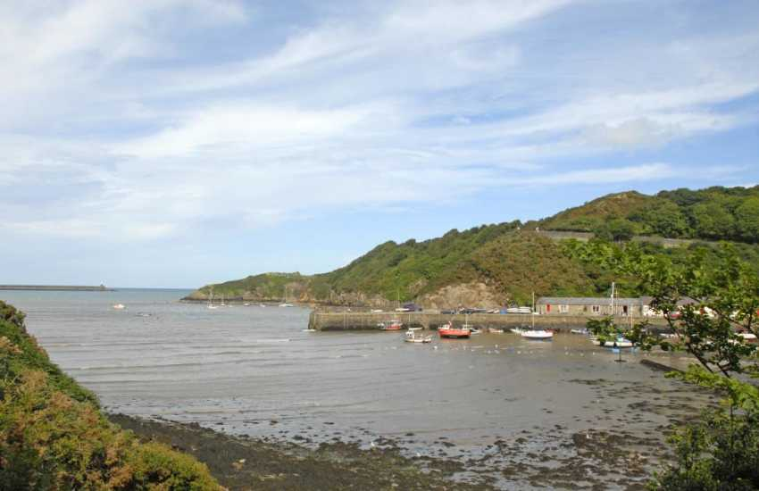 Fabulous views over the Gwaun Estuary and picturesque Lower Town harbour from the grounds at Carreg Yr Eos