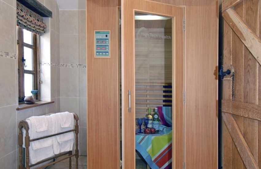 Pembrokeshire holiday cottage - master en-suite with sauna