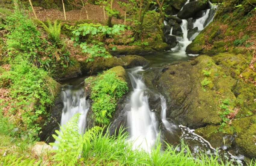 Arthog Falls - a wonderful walk cutting up through the woodlands