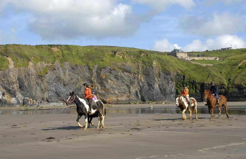 Nolton Haven Riding Stables caters for all levels of rider experience. Enjoy an exhilarating gallop along Druidston beach!