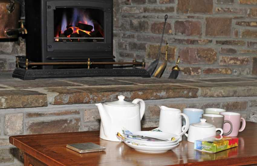 Brecon Beacons holiday cottage - gas fire