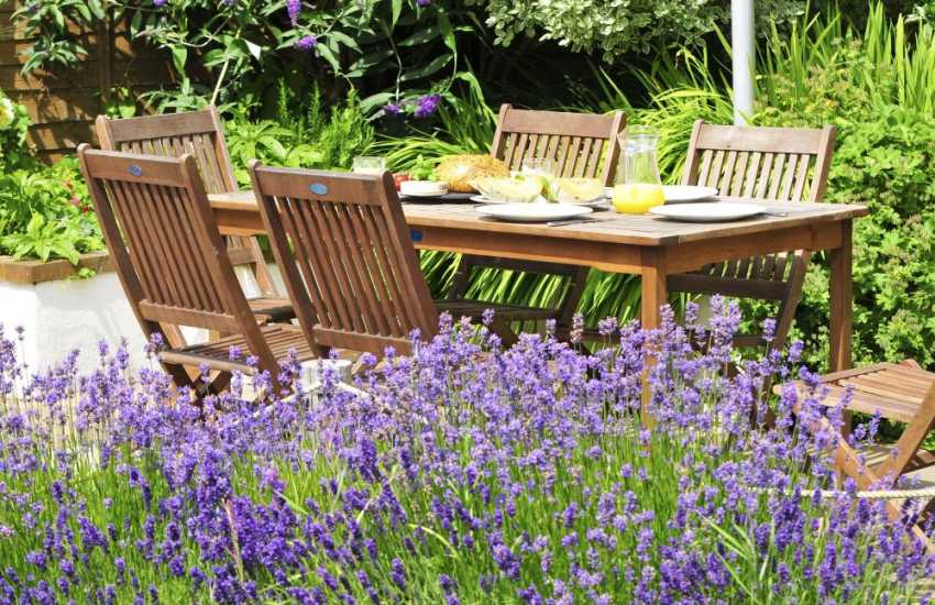 Lleyn Peninsula cottage - garden