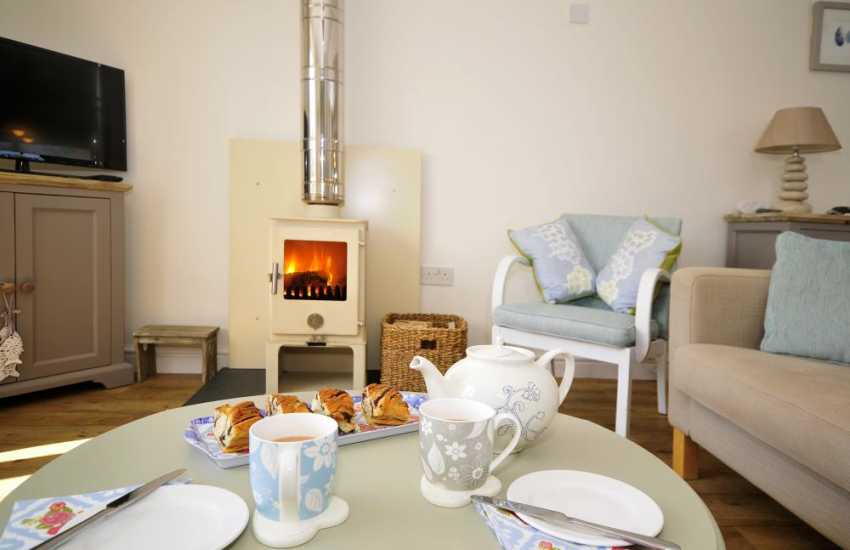 Cottage with wood burner and Wifi north Wales -  fire