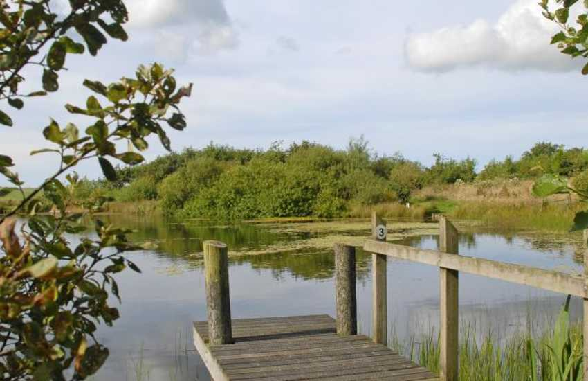 Nature reserve containing two small lakes and a meadow with large pond