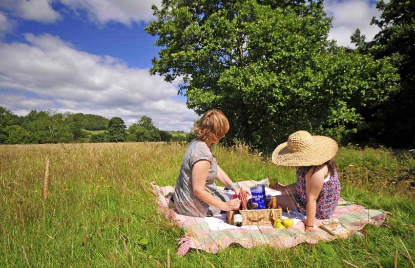 Riverbank picnics in rural mid Wales