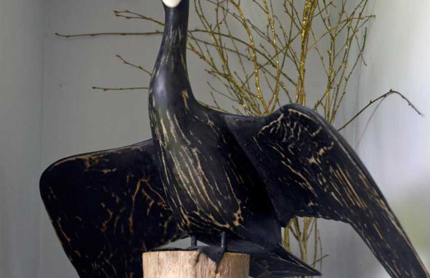 Carved wooden Shag on driftwood