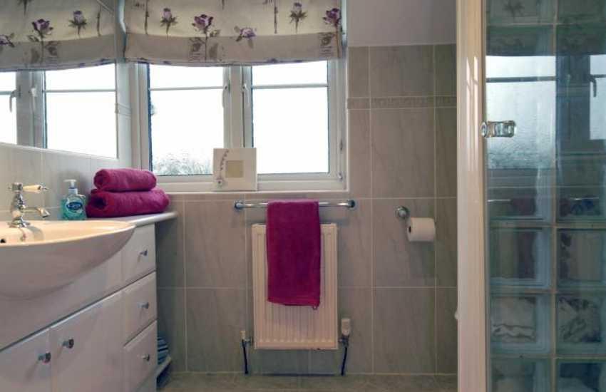 Pembrokeshire holiday home - master en-suite shower