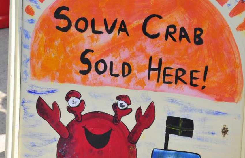 Freshly caught crab and dressed lobsters are available from 'Something Fishy' or Solva Seafoods' in Upper Solva