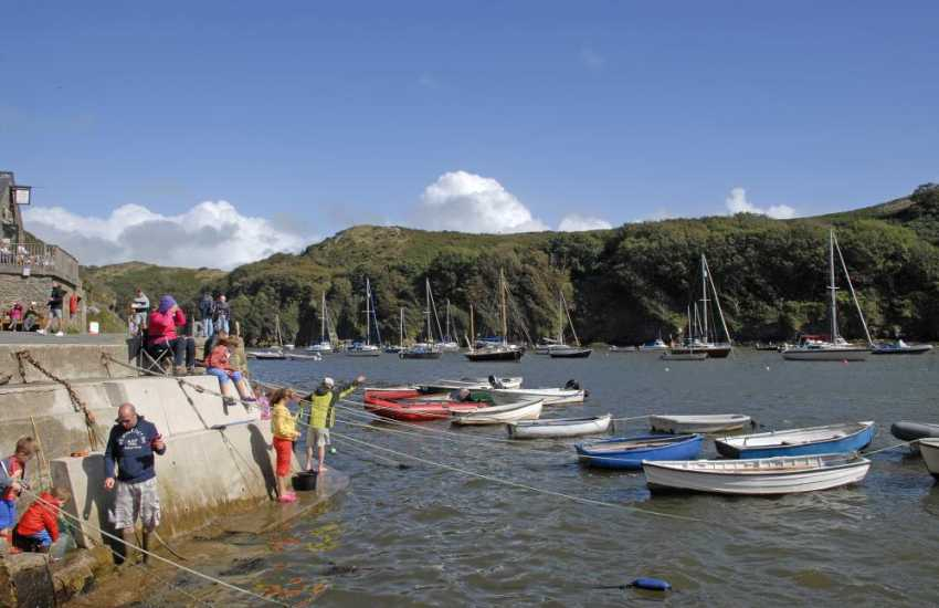 Solva is a picturesque harbour village and a great spot to do some 'crabbing'at high tide