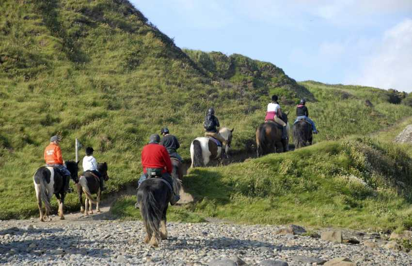 Crosswell Horse Agency, Crymych - Trekking, trail riding, pub rides, 'own a pony for a day' and lessons from half to one hour. Great fun for everyone!