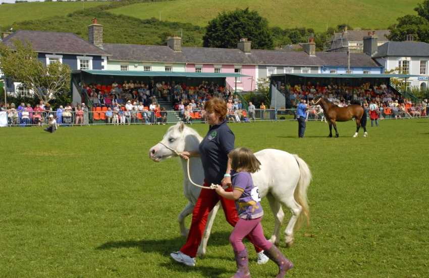 Aberaeron's 'Festival of Welsh Ponies & Cobs' takes place in Square Field during the month of August - a lovely day out for all the family